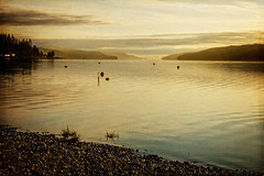 Puget Sunrise (Diana Philpot) Tags: statepark water misty sunrise washington pacificnorthwest pugetsound pnw