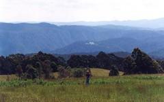 528 Sawyers Ridge Road, Braidwood NSW