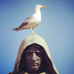 (kekyrex) Tags: italy seagulls rome roma italia campodifiori giordanobruno