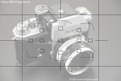 Nikon D810 - Autofocusing - 11 Point (dojoklo) Tags: grid book nikon focus dummies dynamic tricks howto tips use setup guide manual af setting learn tutorial metering recommend autofocus focusing quickstart d810 11point autofocusing afpoint nikond810 areamode afsquare