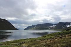 Veiðileysufjörður, Hornstrandir Nature Reserve (Westfjords)