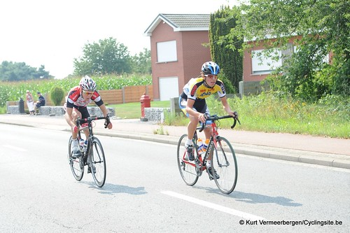 Geel Oosterlo  (58)