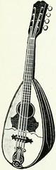 Anglų lietuvių žodynas. Žodis mandolinist reiškia mandolinistė lietuviškai.