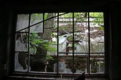 IMG_0114 (Jeffrey Terranova) Tags: newyork abandoned graffiti greenhouse urbanexploration bti yonkersny boycethompsoninstitute canonrebelxsi