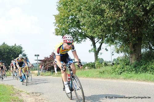 Geel Oosterlo  (102)