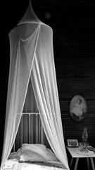 Sweet Dreams (RobertJPhotos) Tags: summer blackwhite bed nikon florida sleep coastal dreams nostalgic americana sanibelisland sweetdreams mosquitonetting