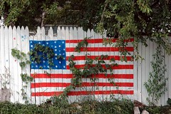Oh say can you see the stars on the flag? (kennethkonica) Tags: blue red usa white green leaves america fence stars outdoors weeds nikon midwest random stripes indianapolis flag indy indiana americanflag nikond70s redwhiteblue hoosiers