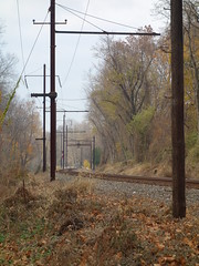 201611031 Lancaster County and Norfolk Southern railway line (taigatrommelchen) Tags: 20161147 usa pa pennsylvania bainbridge railway railroad explore