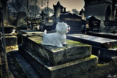Père Lachaise_2660 (Sleeping Spirit) Tags: cimetière pèrelachaise cemetary cemetaries