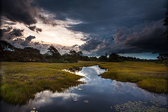 Estrada Parque - Pantanal da Nhecolândia (Marcos Paiva) Tags: estradaparque estrada nhecolândia entardecer pôrdosol pantanal bioma corumbá rio natureza aoarlivre faunalivrefaunaviva