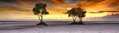 Palawan, Philippines (MKHardyPhotography) Tags: mkhardy landscape photography philippines palawan