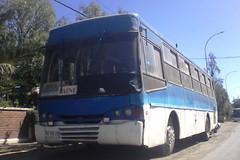 Caio Alpha M.Benz Particular (oyarcevergara2022) Tags: caio mercedes benz buses 1420 micro amarilla