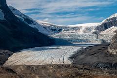 Glacier Athabasca (Seb & Jen) Tags: rocheuses rockies alberta canada athabasca glacier icefield columbia