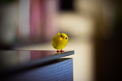 Easter...on the edge :) (iwona.kilichowska) Tags: easter macro closeup blur dof depthoffield colorful colours bokeh april springtime holiday chicken yellow bird indoor composition