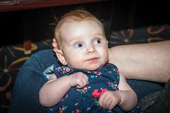 DSC_6627 (fellajr) Tags: babies families eatingout kids moms infants lunch