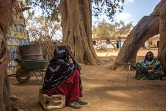 Somaliland_Mar17_0234 (GeorginaGoodwin) Tags: georginagoodwingeorginagoodwinimageskenyakenyaphotojournalistkenyanphotojournalist kenyaphotographer eastafricaphotographer kenyaphotojournalist femalephotographer idps refugees portraits portraitphotographer canon canon5dmarkiii canonphotos drought famine somalia somaliland malnutrition foodsecurity donorfunding aid foodaid wash health sanitation hornofafrica
