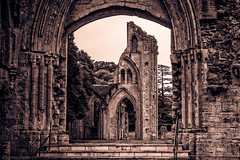 Through the past (Anthony P26) Tags: architecture category decay england external glastonbury glastonburyabbey places somerset travel ruins arch steps stair nave church abbey monastery dissolution canon canon70d canon1585mm architecturephotography travelphotography monochrome tinted gothic gothicarchitecture placeofworship trees sky cloudysky greysky grass lawn