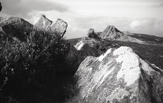 rough with the smooth (OhDark30) Tags: olympus 35rc 35 rc film 35mm monochrome bw blackandwhite bwfp fomapan 200 rodinal rocks hill stiperstones shropshire outcrop