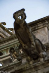 Deep-Throat (RaphCass) Tags: 18105 d3200 nikon stone doré pierre sculpture cathédrale tours 2017 gargouille avril