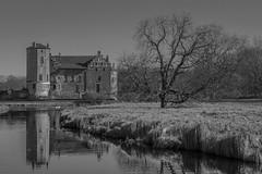 Torups slott, Svedala (s_p_o_c) Tags: torup torupsslott thetorupcastle bara svedala malmöstad malmökommun malmö görvelfadersdottersparre skåne sverige sweden slott bokskogen castle