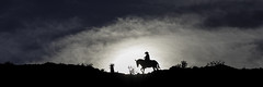 90246936917-86-The Cowboy Rides Away-1 (Jim There's things half in shadow and in light) Tags: sky clouds cowboy horse landscape sun silhouette horsebackriding redrockcanyon mojavedesert canon5dmarkiv sigma24105mmf4dg blue desert nevada