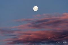 20170408-02-Moonrise (Roger T Wong) Tags: 2017 australia hobart rogertwong sel70300g sony70300 sonya7ii sonyalpha7ii sonyfe70300mmf2556goss sonyilce7m2 tasmania clouds moon moonrise sunset