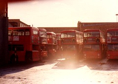 Out the Back are the Broken Toys... Catford Garage, March 1982 (aecregent) Tags: london catford lt daimler fleetline dms garageview