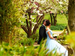 A special day... (libra1054) Tags: love amour amore amor couple frühling spring primavera printemps outdoor