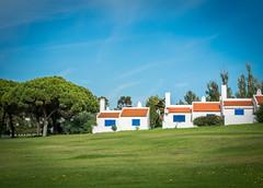 Häuser (olipennell) Tags: alvor baum haus portugal faro pt tree pine pinie gras hotelanlage grass bluesky