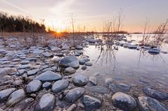 _DSC2874 (phatwhistle) Tags: leelanaustatepark leelanau michigan landscape seascape sunset rocks tree swamp greatlakes goldenhour sea lakemichigan statepark michiganstatepark tokina