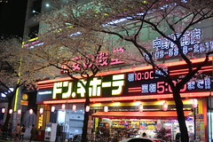 IMG_0549 (digitalbear) Tags: canon powershot g9x markii mark2 nakano dori sakura cherry blossom blooming fullbloom tokyo japan yozakura hanami