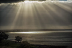 Let there be Light DSC_1891 (BlueberryAsh) Tags: april2017 phillipisland sunrays clouds storms ocean sunset sanremo australianseascape nikond750 nikon24120 cloudsstormssunsetssunrises weather