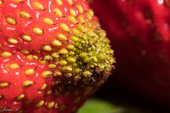The green zone MM (Irina1010) Tags: strawberry red seeds macromondays fruit macro bokeh hat wow cc cx
