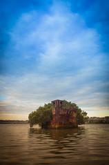 Homebush (andrew edgar .......) Tags: homebush shipwreck ss ayrfield prick pit sydney nsw long exposure snuset