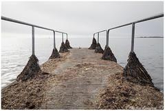 170416.2 007web1 (Marteric) Tags: varberg sweden halland seaside bridge jetty seascape algiers seaweed horizon ocean