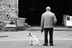observers (Tomislav Bicanic) Tags: observers watching walker oldman dogwalk