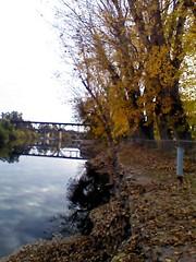 Fall_Talkoot_093