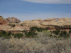 Arch above Big Ruin (John Erik Morrow) Tags: canyonlandsnationalpark canyonlandsneedlesdistrict daviscanyon uppersaltcreek lavendercanyon bigpocket uppersaltcreekcanyon saltcreekpocket neddlesdistrict upperjump