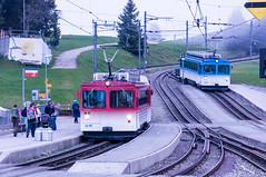 Rigi Railways (Bephep2010) Tags: railroad blue red rot schweiz switzerland sony railway blau ch schwyz bergbahn nex cograilway zahnradbahn goldau kantonschwyz rigistaffel vitznaurigibahn aarth nex6 sel55210