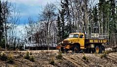 "Old ""Jimmy"" (JLS Photography - Alaska) Tags: alaska truck landscape landscapes cabin vehicle wilderness northof60 lastfrontier oldgmc alaskalandscape jlsphotographyalaska"