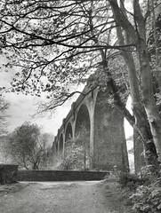 Railway viaduct, Pontrhydyfen (4) (Fragglehound) Tags: bridge history monochrome wales arch arches viaduct hdr twitter pontrhydyfen