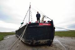 DSC_1993 (Keith Grafton) Tags: dog dave boat oakdale alsatian barge askam may2014 merseyflat