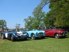 Jaguar, Paramount Sports and Paramount Roadster (richytanimal) Tags: paramount pistonheads caringwithcars rarebritishcars paramount15litre 1950sparamount sxm269 paramountten paramountmk2 rareparamount britishparamountcar paramountbristol