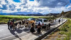 На тибетских дорогах
