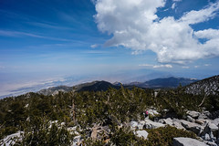 Cactus to Clouds (Skyline Trail) (Trail to Peak) Tags: skyline photo mt palmsprings tram peak hike trail summit artmuseum sanjacinto cactustoclouds