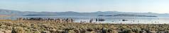 Tufa Panorama