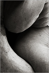 secret (nevil zaveri ( away : )) Tags: light shadow blackandwhite bw india abstract monochrome sepia photography photo photographer photos stock images pack photographs laundry photograph bombay destination maharashtra conceptual bundle mumbai load zaveri burden slum stockimages ghat nevil dhobi jute dhobighat nevilzaveri