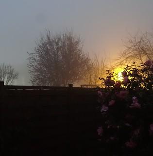 20140313 Brouillard d