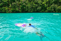 Day4  -  (M.K. Design) Tags: travel fish seascape beautiful landscape boats amazing nikon scenery honeymoon diving spa ultrawide palau      2014 koror      jellyfishlake   gopro hero3        palauroyalresort  longrainbow   d800e  afs1424mm28g