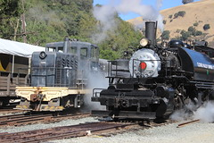 Clover Valley Lumber Co. #4 (Baldwin 2-6-6-2T Mallet) and USAX #7348 (GE 65-Tonner) in Niles Canyon, CA (CaliforniaRailfan101 Photography) Tags: yard steam ge porter baldwin tankengine steamlocomotive alco nilescanyonrailway centercab 262t steamfest ncry 040t 65tonner 2662t quincyrailroadco2 robertdollarco3 clovervalleylumberco4 steamfest2014 masoncountyloggingco7 usax7348 steamfest2014quintupleheader chiggen santacruzportlandcement2